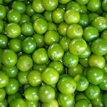 Lime, Mexican Thornless* -5 Gallon