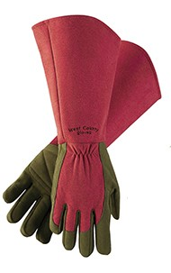 Pruning Gloves